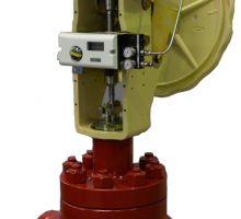 Single Ported Globe Control Valve Type S1B