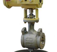 Rotary Plug Control Valve Type S33